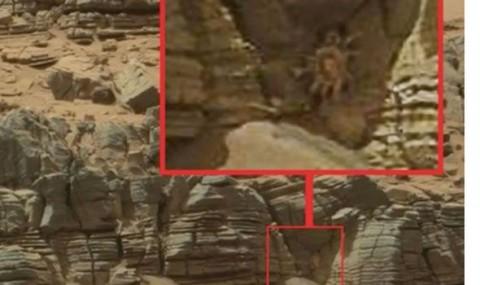 Mars-Crab-596486